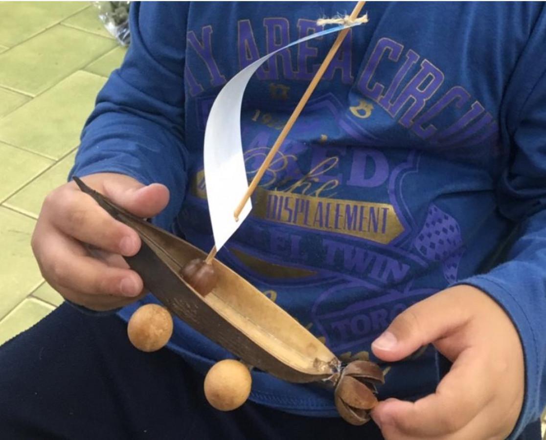 植物果實小帆船 DIY的文章封面圖片